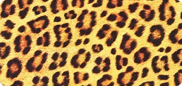 Pattern Animal Kingdom Wide Sateen