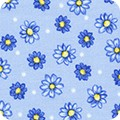 Featured image FLH-20251-4 BLUE