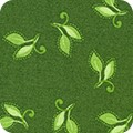 Featured image FLH-20253-459 FRESH SAGE