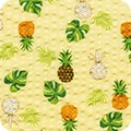 Featured image SB-4141D4-2 PINEAPPLE