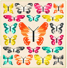 Pattern Lepidoptera by Elizabeth Hartman feat. Kona® Cotton
